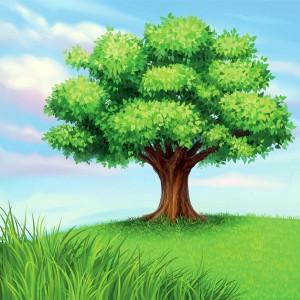 zealot tree
